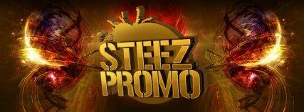 steez logo